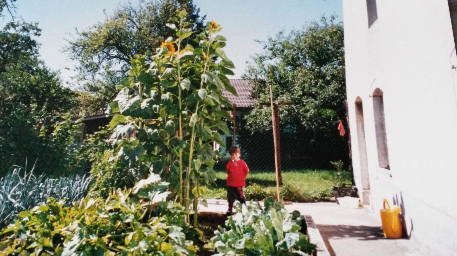 Tom le Jardinier enfant
